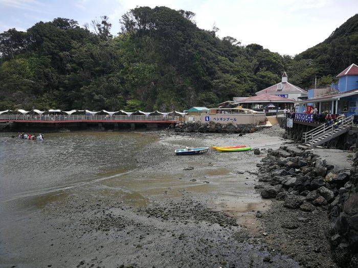 海と一体化した下田海中水族館