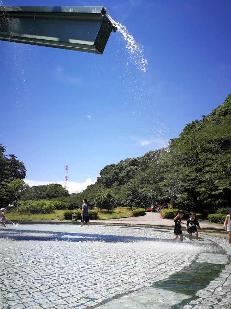 芹が谷公園の噴水