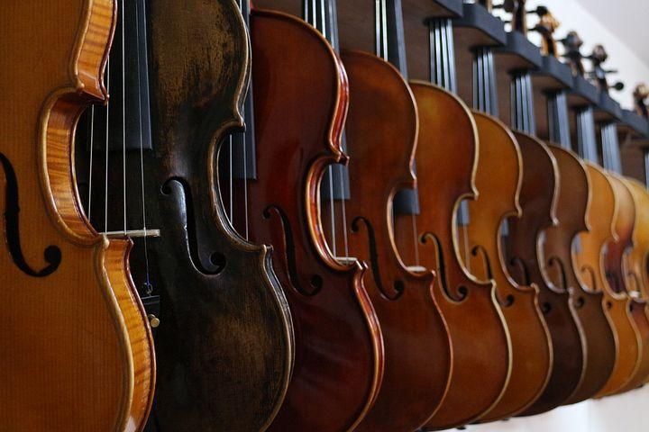 ヤマハバイオリン v10g