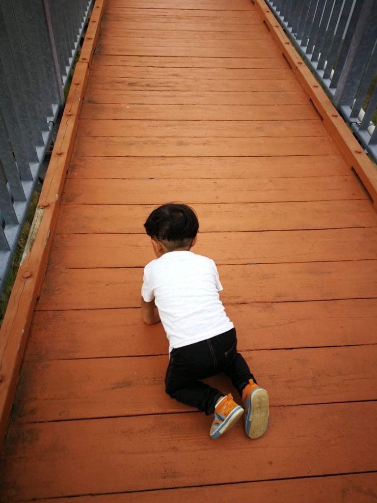 宮ヶ瀬湖畔園地 吊り橋