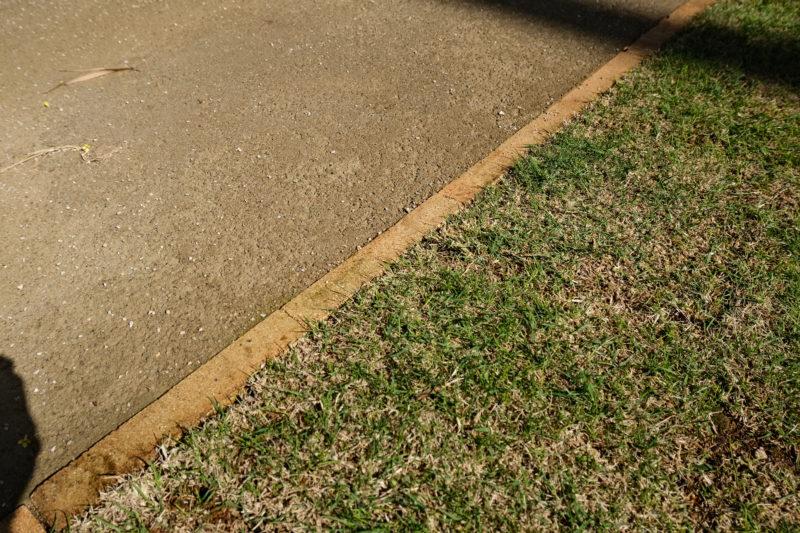 土間と芝生の境界線